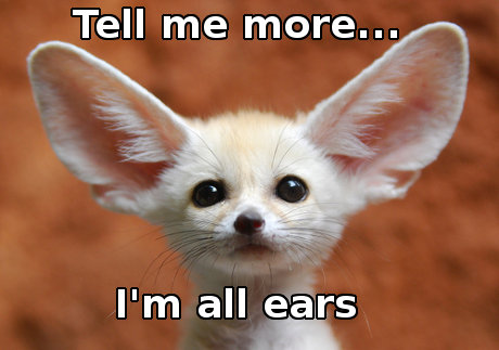Image result for i'm all ears