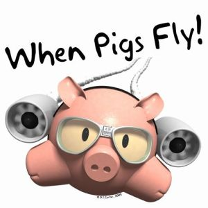when-pigs-fly-aurally-dj-service.f2a87741e86b13455cec9c1572a00959-rg-522x522